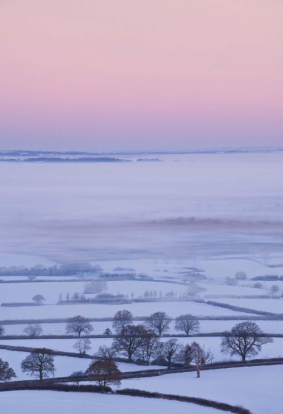 Bulbarrow-Hill-Dorset-Winter-Mist-Dawn-Photography