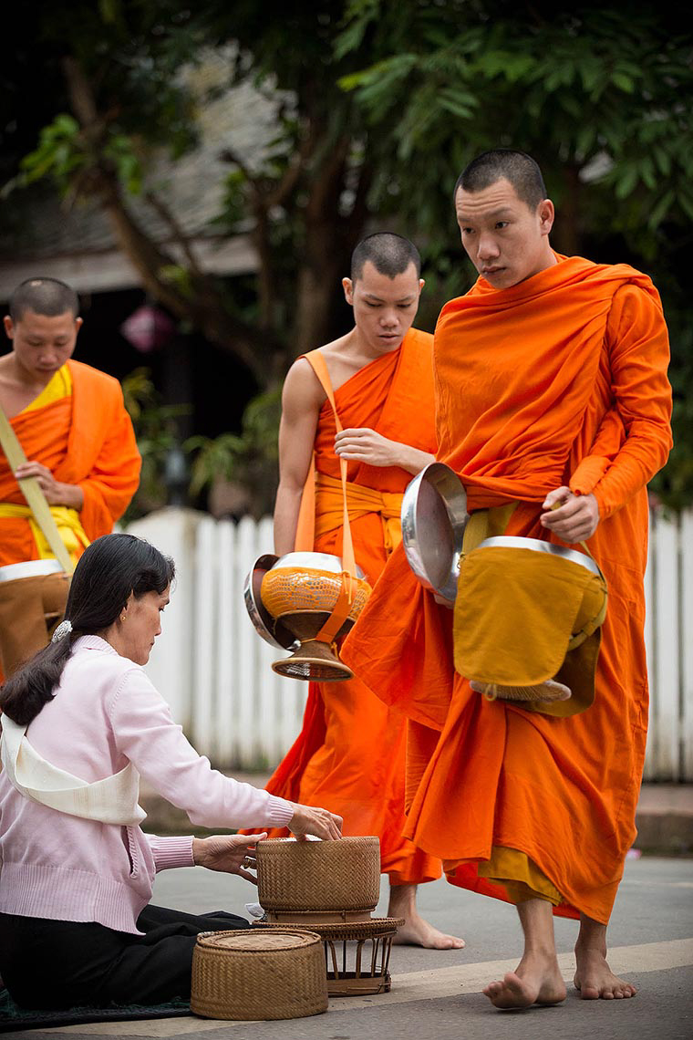 buddhist-monks-collecting-alms-morning-luang-prabang-laos-asia